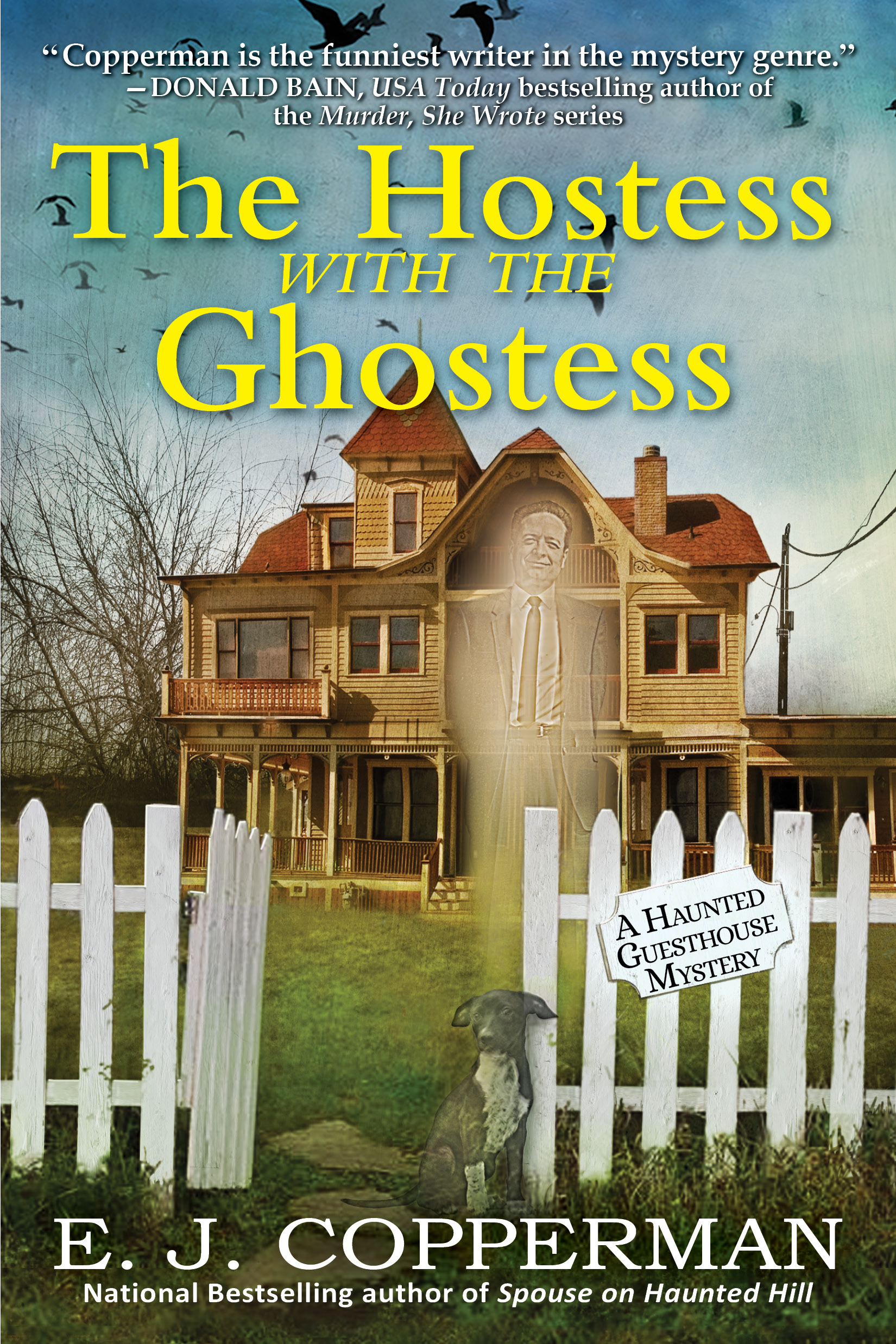 Haunted Guesthouse Series E J Copperman